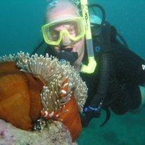 Scuba Diving - Great Barrier Reef - Australia